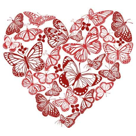 Valentines Butterfly Heart Illustration